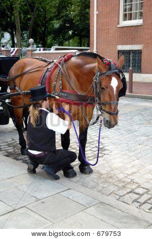 Caretaker Caring For His Horse