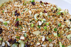 Wheatberry Salad Upclose