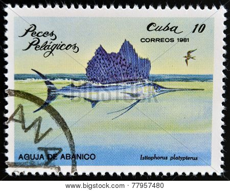 CUBA - CIRCA 1981: A Stamp printed in Cuba shows a Sailfish