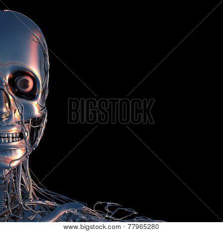 Half Metal Head In Chrom