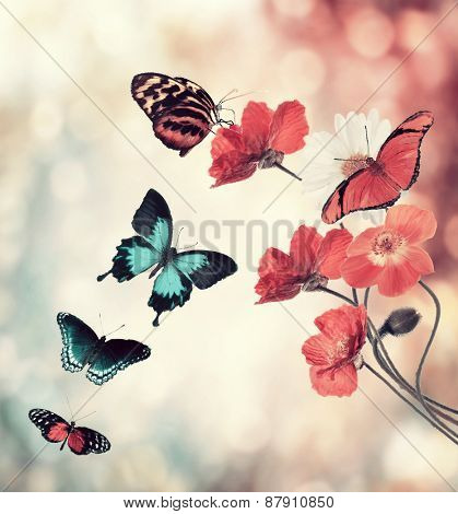Digital Painting Of Flowers And Butterflies