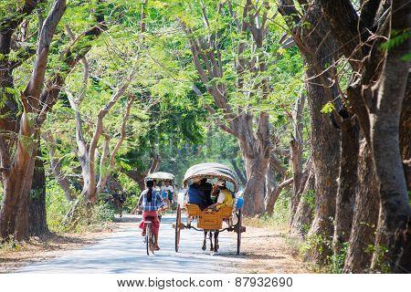 Horse-drawn Carriage In Inwa, Myanmar