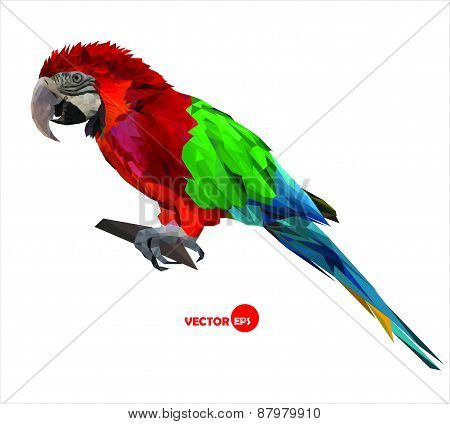large bird, colorful parrot macaw sitting on a brunch, made in low polygon style on white background