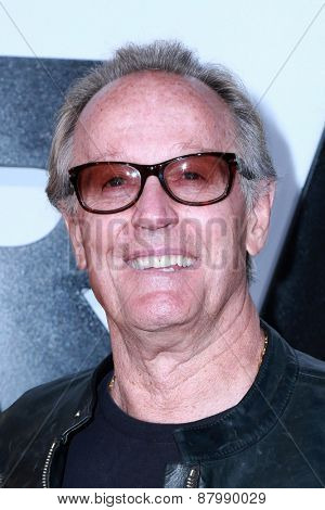 LOS ANGELES - FEB 1:  Peter Fonda at the