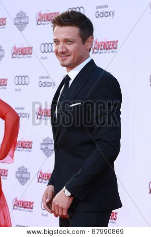 LOS ANGELES - FEB 13:  Jeremy Renner at the