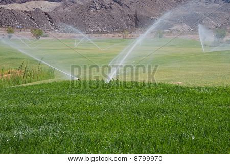 Sprinklers On Golf Course