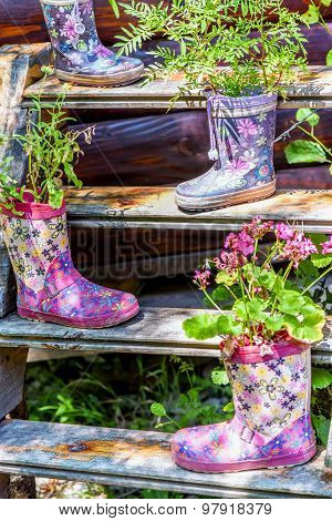 Flowers In A Rubber Floral Knee-boot For Garden Decoration