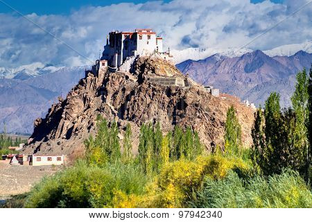 Stakna Monastery, Ladakh, Jammu And Kashmir, India