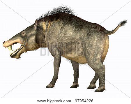 Entelodon Omnivore