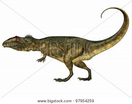 Giganotosaurus Side Profile