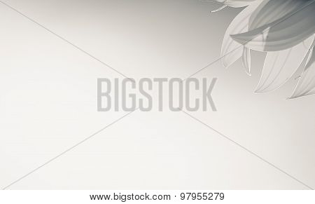 isolated grey sunflower petals with blank area on grey background