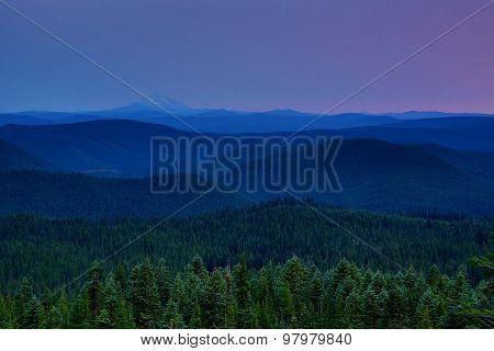 Purple Haze Mountain View