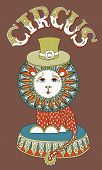 decorative colored line art drawing of cirque theme - lion in a hat with inscription CIRCUS, vector illustration poster