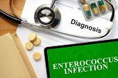 Words Enterococcus infection on a notepad and pills on the wooden table. poster