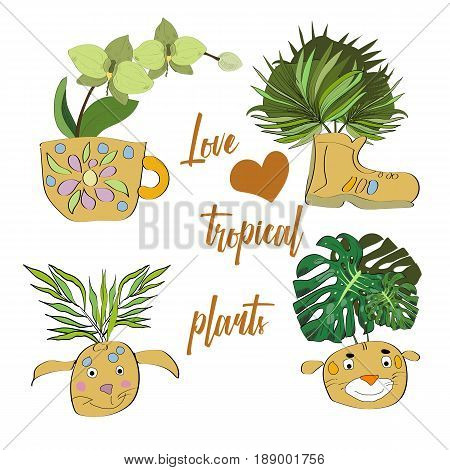 Hand Drawn Potted Tropical Plants Set In A Doodle Style. Sketch Potted Flowers Illustration In Funny