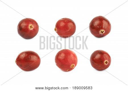 Single ripe cranberry isolated over the white background, set of six different foreshortenings