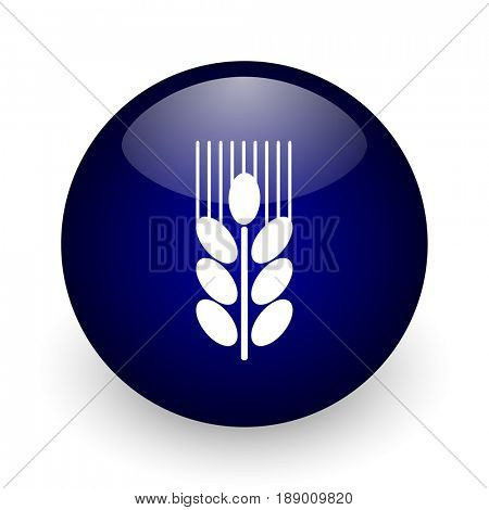Grain blue glossy ball web icon on white background. Round 3d render button.