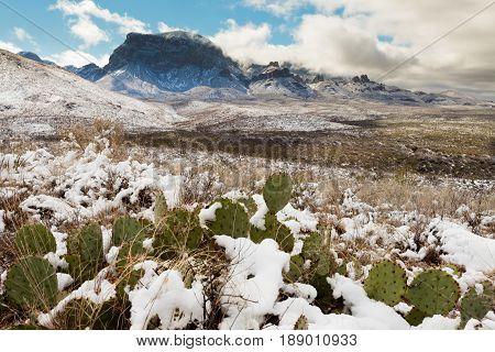 Chisos Mountains Snowy Desert Big Bend Np Tx Usa