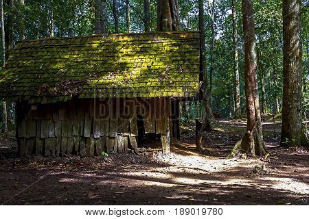 Wood hut dilapidated in jungle and light sun at National park in countryside of Thailand