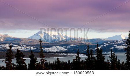 Pink Winter Clouds Lake Laberge Yukon Landscape