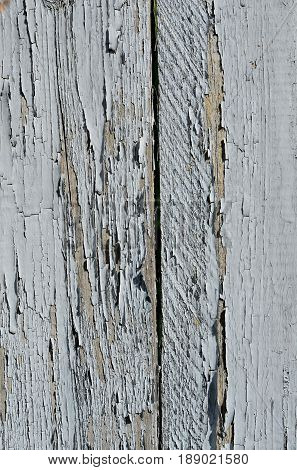 Woody background of two boards with exfoliating gray paint.