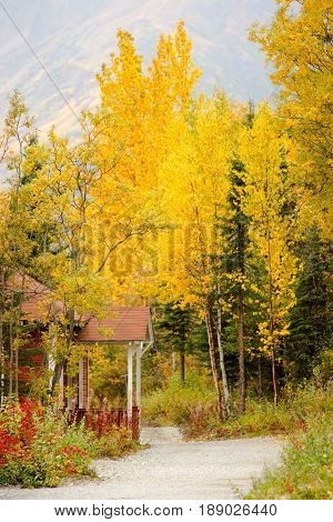 A porch juts out into the path below the trees with autumn leaves