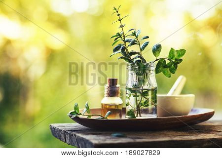 Spa composition with natural mint essential oil outdoors. SPA background. Toned image.