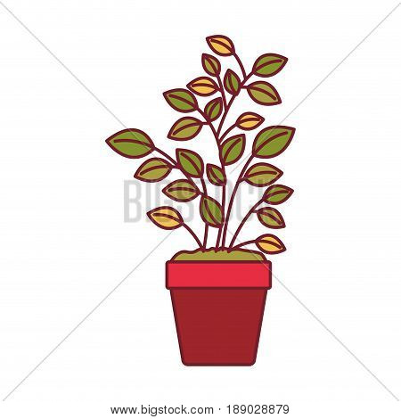 colorful graphic of plant pot with dark red line contour vector illustration