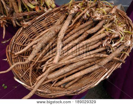 Basket of burdock root on purple tablecloth at farmers market