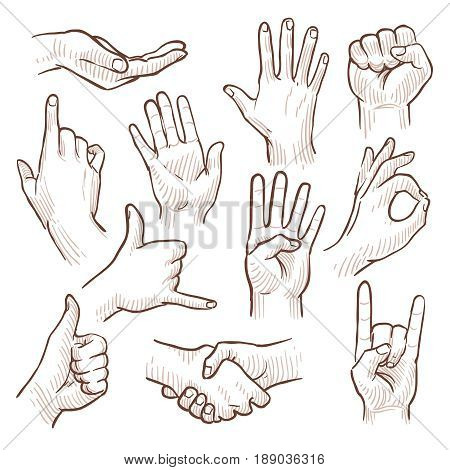 Line drawing doodle hands showing common signs vector collection. Gesture hand for communication, illustration of sketching hands