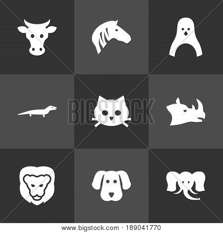 Set Of 9 Zoology Icons Set.Collection Of Gecko, Trunked Animal, Pussy And Other Elements.
