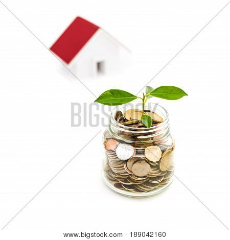 Young plant growing from money in the glass jar with blur house background - savings and invesment concepts