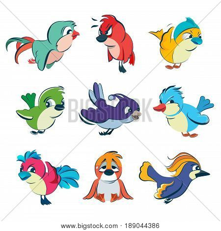 Funny different birds. Vector illustrations set in cartoon style. Cartoon colored birds collection