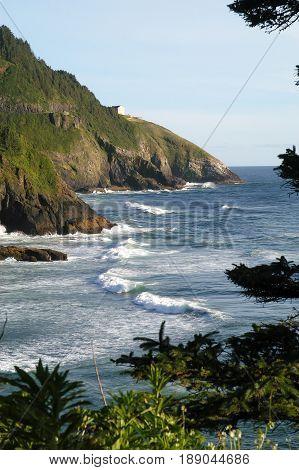 Coastal Scene taken from Heceta Head Lighthouse Looking South