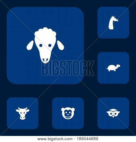 Set Of 6 Animal Icons Set.Collection Of Tortoise, Lamb, Camelopard And Other Elements.