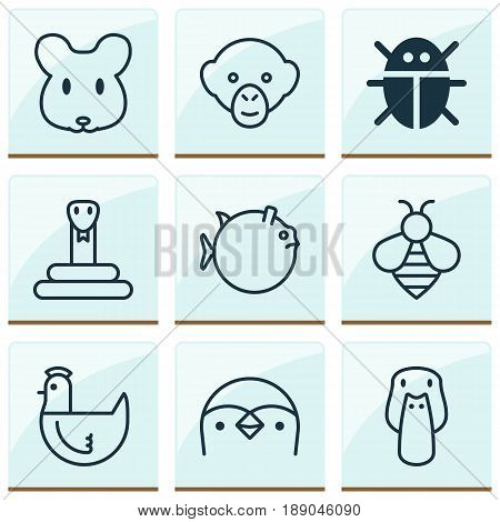 Animal Icons Set. Collection Of Hen, Beetle, Butterflyfish And Other Elements. Also Includes Symbols Such As Bug, Duck, Fish.