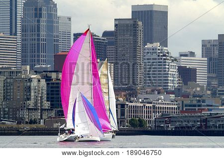 Sailboats against Seattle skyline on Elliott Bay Seattle WA