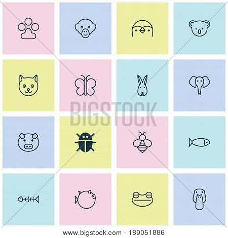 Zoology Icons Set. Collection Of Duck, Bumblebee, Moth And Other Elements. Also Includes Symbols Such As Koala, Duck, Paw.