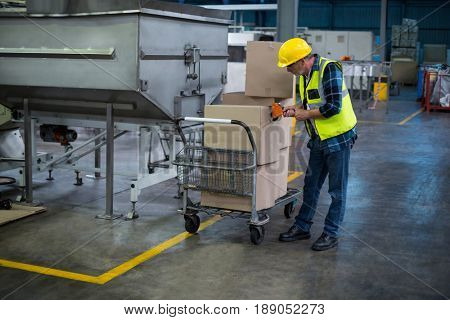 Factory worker loading cardboard boxes in drinks production factory