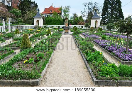 Leonberg, Baden-Wurttemberg, Germany - April 23, 2017: Old bitter orange garden at the palace in Leonberg in the spring.