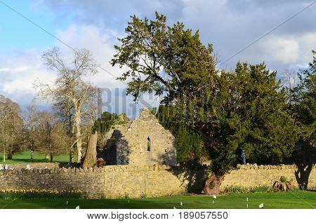 The ruins of the Adare Franciscan friary formerly known as the Church of St Michael Archangel of the Friars Minor.