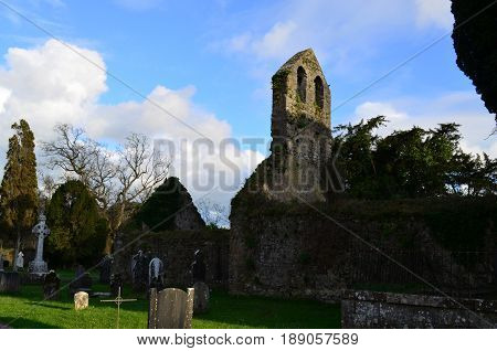The stone ruins of the Adare Franciscan Friary.