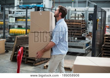 Attentive factory worker carrying cardboard boxes in factory