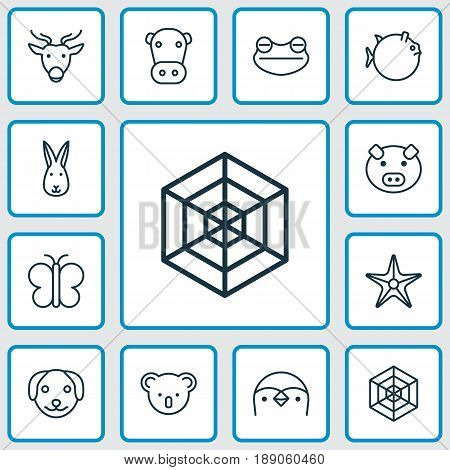 Animal Icons Set. Collection Of Butterflyfish, Toad, Cobweb And Other Elements. Also Includes Symbols Such As Piglet, Globefish, Fish.