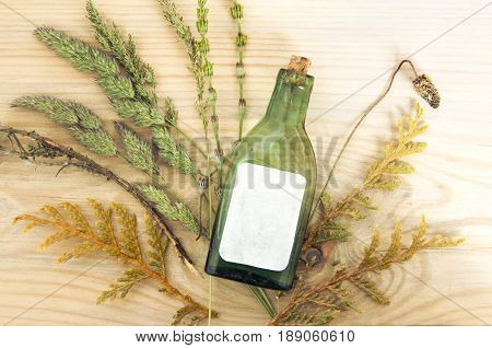 Mock up of small glass antique green bottle with label on wooden background with dry plants close up. For the pharmacy oil cosmetics spices. Top view.