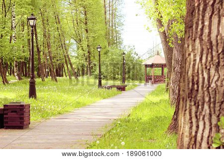 Path in the park, which leads to the gazebo. Beautiful park with trees, lanterns and gazebo. Spring park with dandelions.