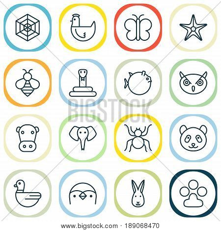 Zoology Icons Set. Collection Of Bumblebee, Trunked Animal, Claw Print And Other Elements. Also Includes Symbols Such As Honey, Elephant, Bear.