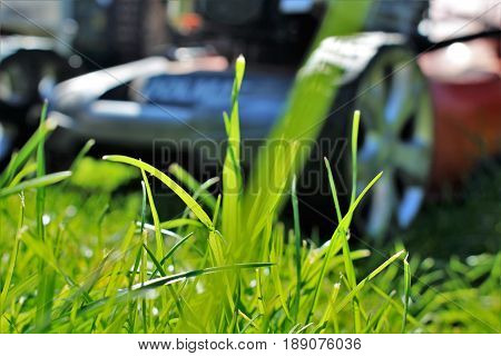 An image of lawn mowing - garde work