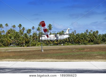 Airplane landing on a landing band among palm trees