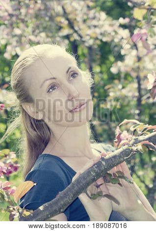 young attractive woman standing near the blossoming crimson apple tree toning.